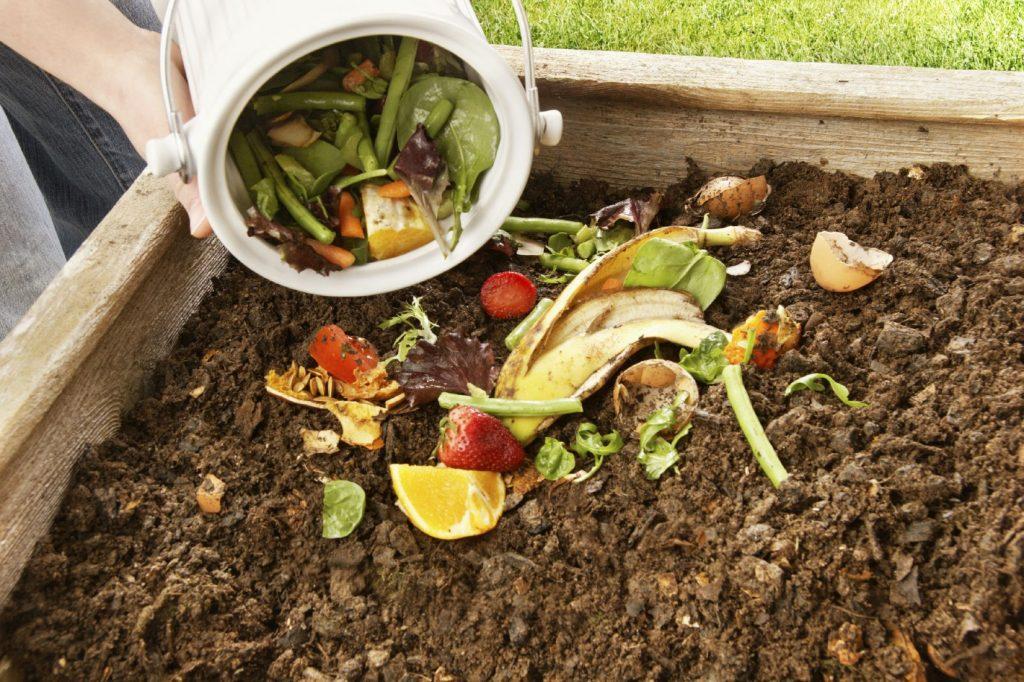 abono-organico-casero