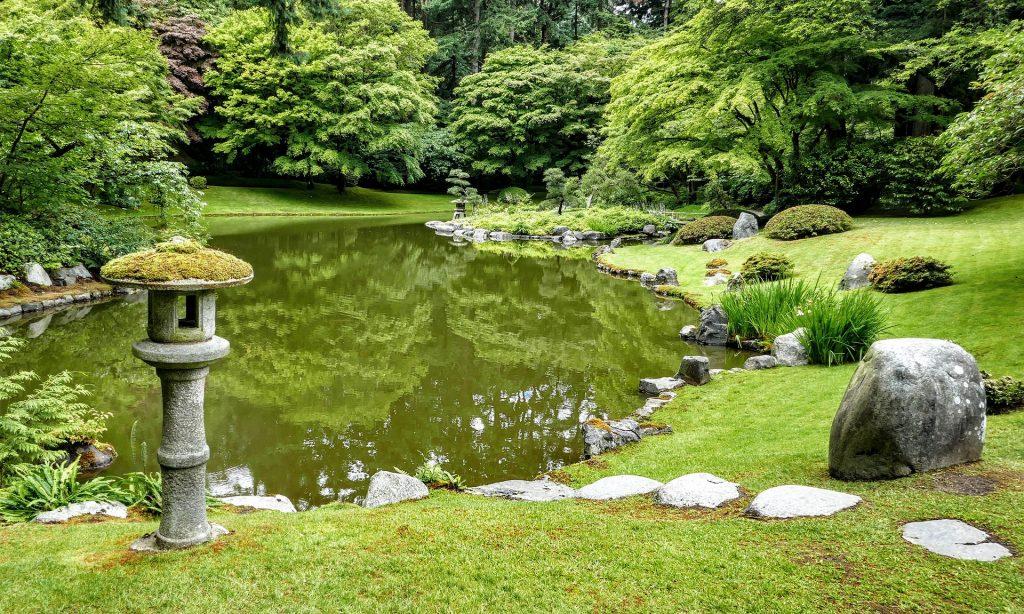 estanque y vegetación japonesa